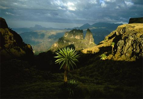 altopiano-etiopia-Monti-Simien