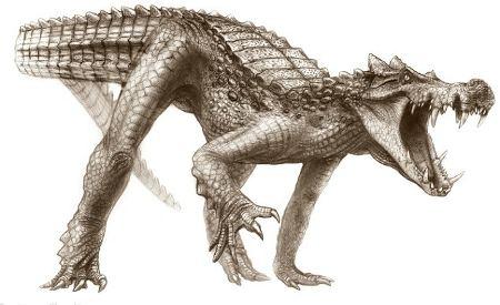 boar-croc