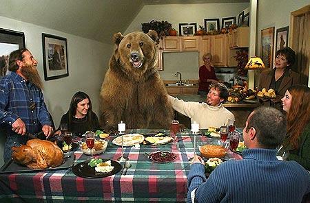 brutus-grizzly-orso-famiglia