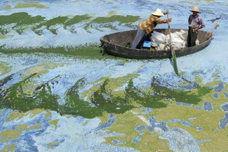 cina-Chaohu-lago-fertilizzanti-alghe