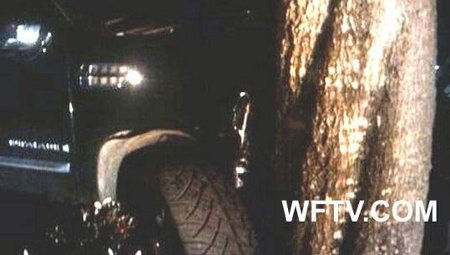 incidente-auto-tiger-woods