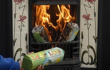 leaf-log-foglie-combustibile