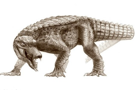 rat-croc
