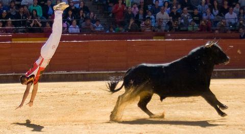 saltatori-toro-valencia-spettacolo-01