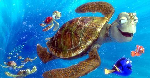 tartaruga-tuffo-oceano-corrente-ricerca-nemo