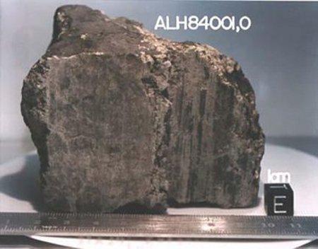 AHL84001-meteorite-marte-vita-organismi