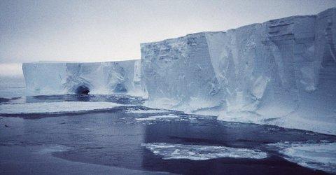 Mertz-iceberg-ghiacciaio-collisione-global-warming-01