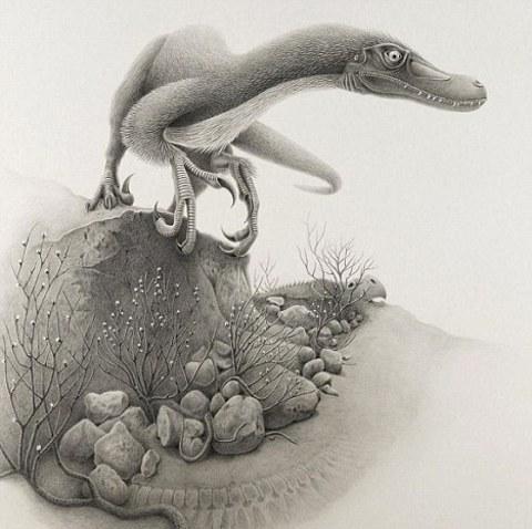 dinosauro-Linheraptor-velociraptor-02