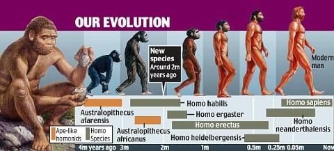 evoluzione-uomo-scimmia-nuova-specie