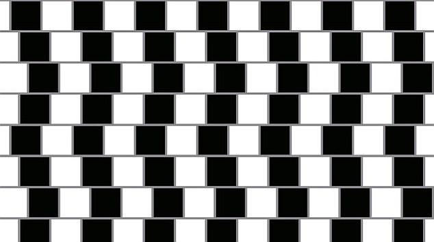 illusione-ottica-foto-01