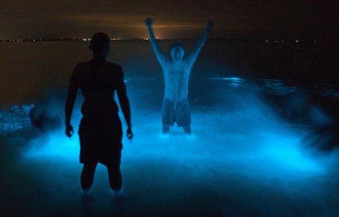 lago-bioluminescenza-foto-01.jpg