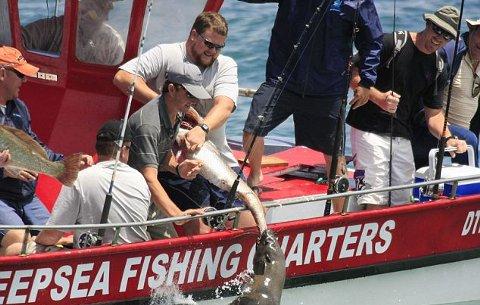 leone-marino-duello-pescatore-pesce-03