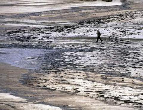 marea-nera-arrivera-spiagge-miami