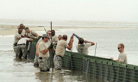 marea-nera-disastro-ambientale-golfo-messico-petrolio-foto-06