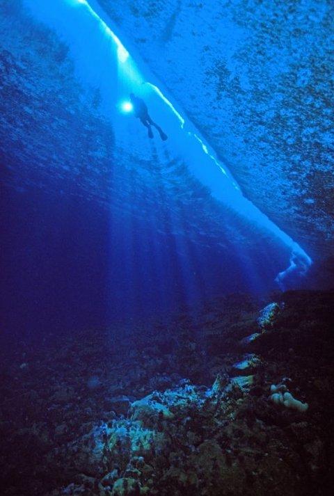 norbert-wu-foto-subacquee-oceano-antartico-02