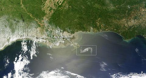 satellite-nasa-marea-nera-disastro-ambientale-golfo-messico-petrolio-foto-02