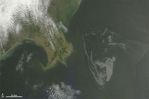 satellite-nasa-marea-nera-disastro-ambientale-golfo-messico-petrolio-foto-03