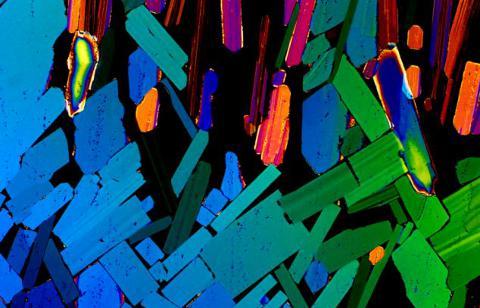 tequila-foto-microscopio