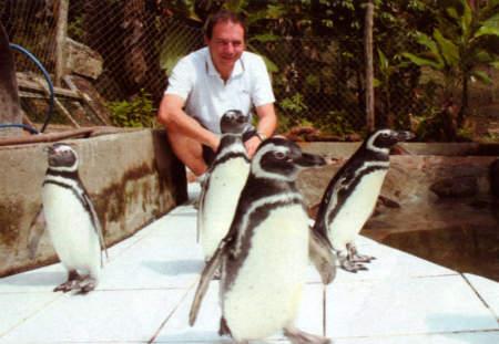 Hugo-Gallo-Neto-centro-recupero-pinguini-san-paolo-brasile