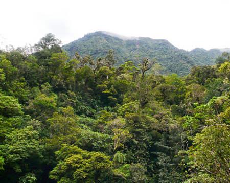 Monte-Bosavi-papua-nuova-guinea