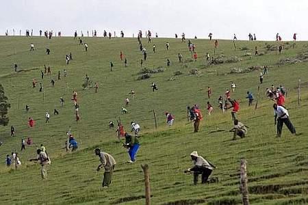 World-Press-Photo-2009-Categoria-People-in-the-News-(Singole)-Chiba-Yasuyoshi
