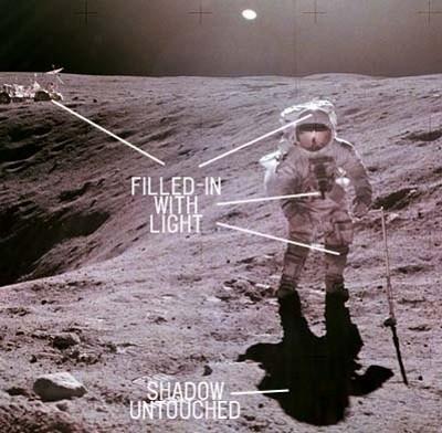 anniversario-40-luna-moon