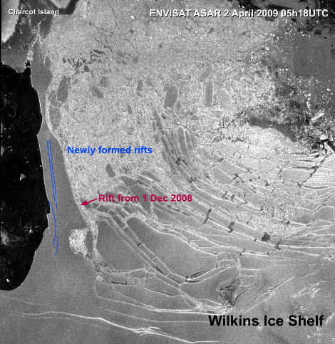banchisa-wilkins-antartide-rottura-ponte-ghiaccio-global-warming