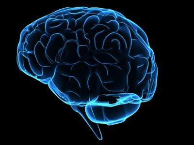brain-cervello-memoria-ricordi