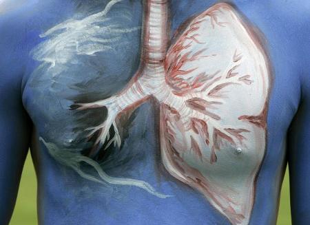 campagna-contro-il-fumo-body-painting-corea-seul