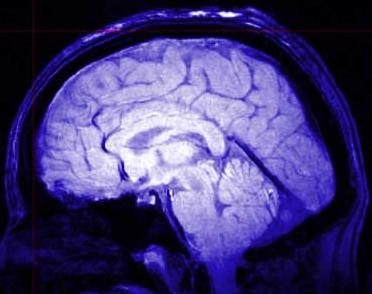 cervello-creativita-colori-blu-rosso