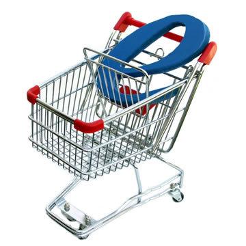 ecommerce-e-bay-spesa-on-line-aumento-nel-2008