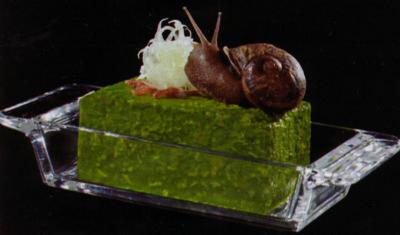 escargots-lumache-avena