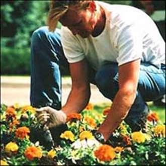giardiniere-giovane