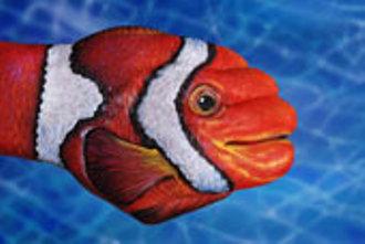 pesce_pagliaccioMani-Animali-body-painting
