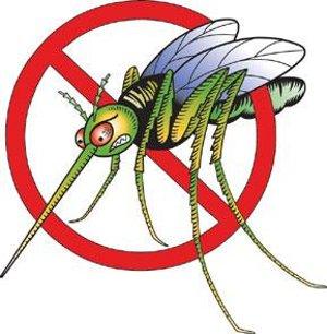 stop-zanzara-cervello-neurotrasmettitori