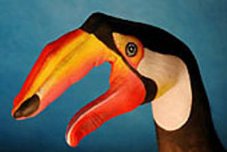 tucano-Mani-Animali-body-painting