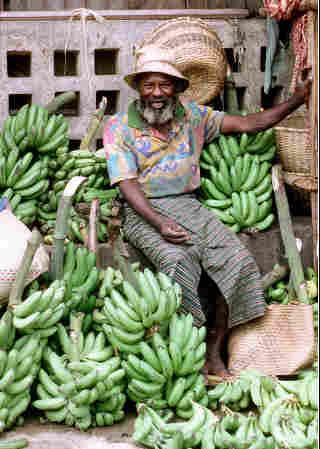 banane-CBS-dimagrire-Giappone-Morning-banana diet-stress-Time-chi-mangia-banane-campa-100-anni