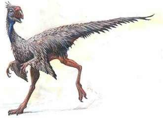 Caudipteryx-Cina-dinosauri-Futuro-Remoto-Napoli-Spielberg