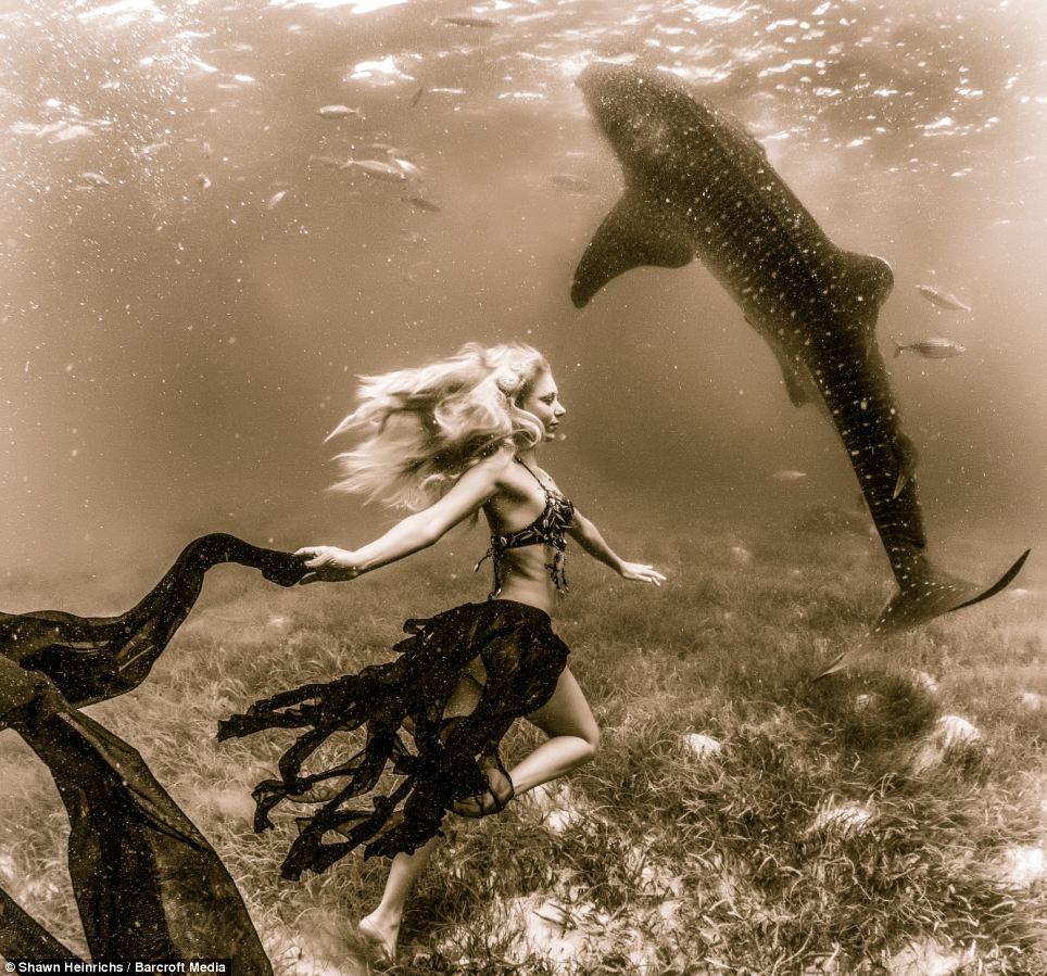 squali-balena-fotomodelle-04