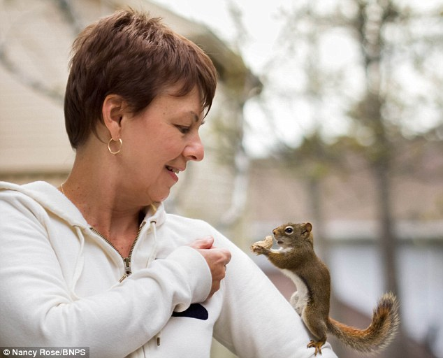 foto-scoiattoli-