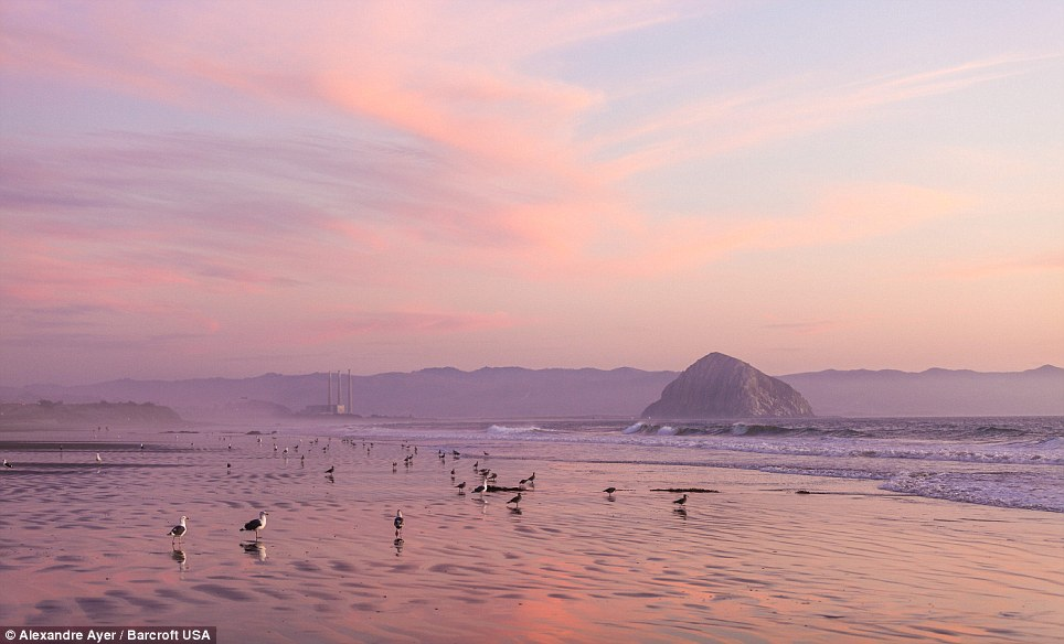 05 - America, paesaggi GOLDEN STATE CALIFORNIA CENTRALE